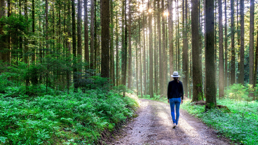 woman walking in a forest after virtual coaching