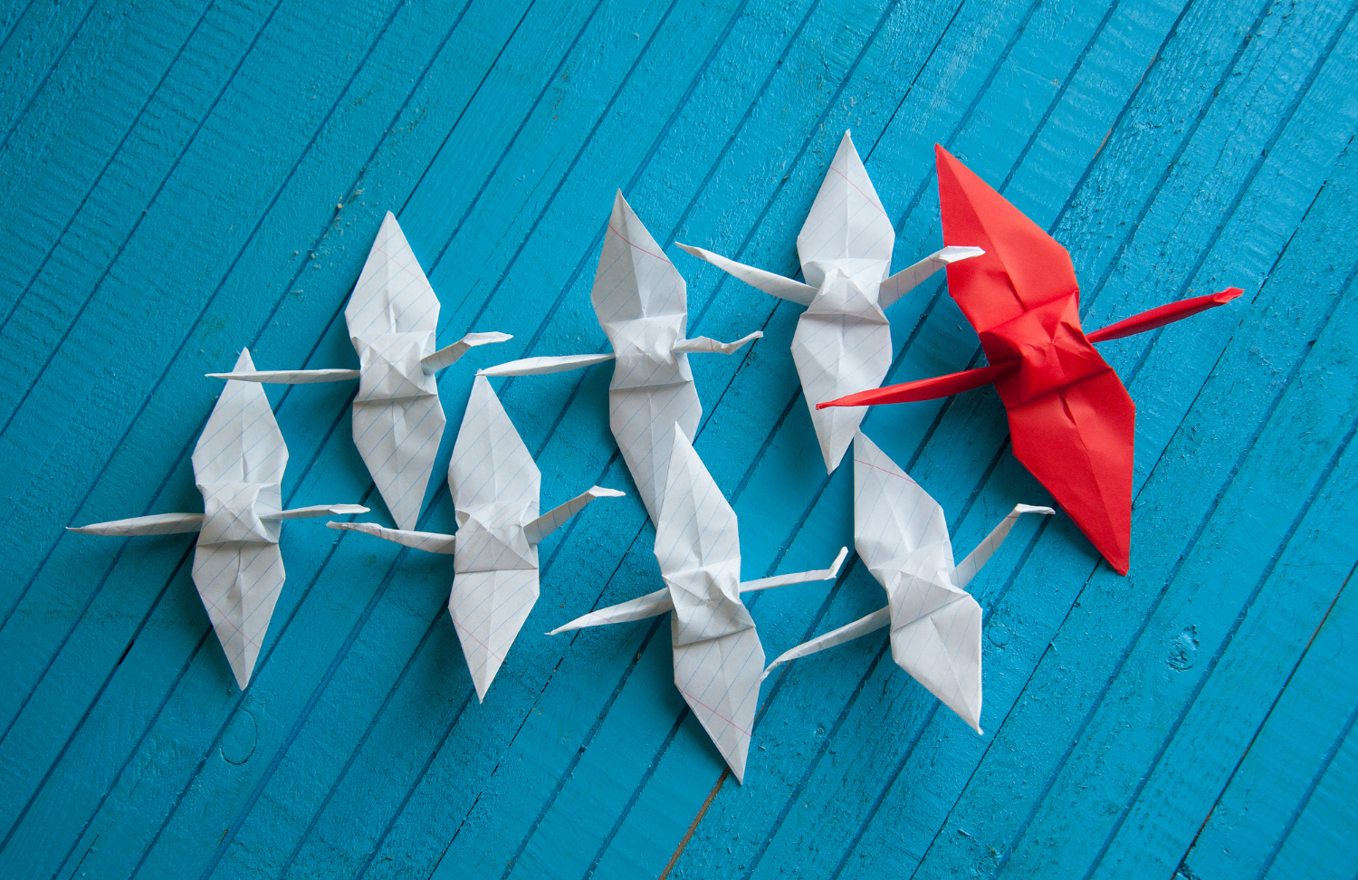 paper cranes in formation darienne mobley one on one coaching